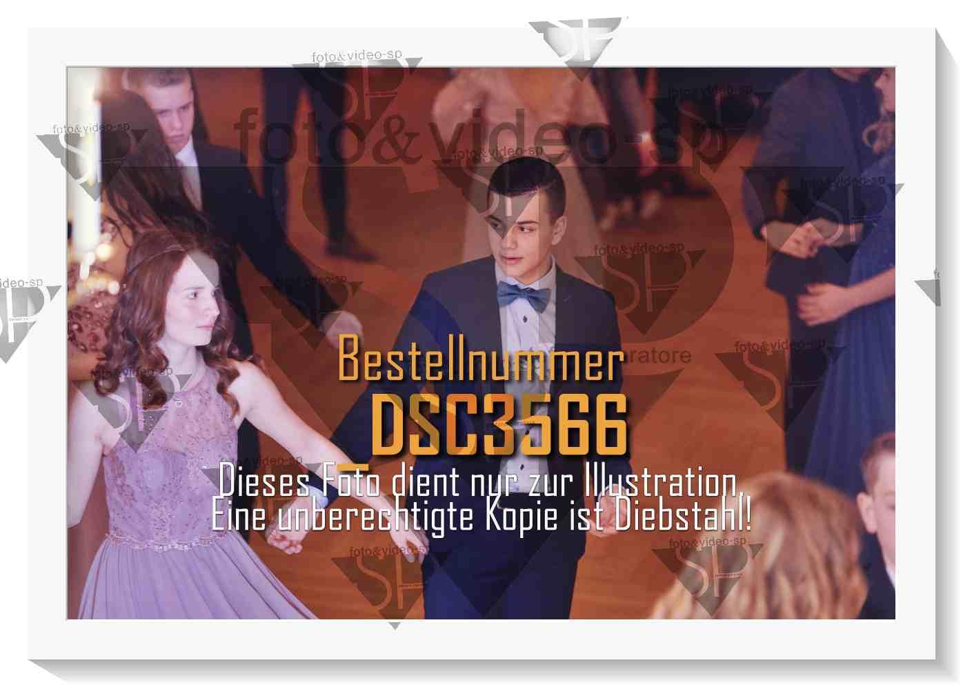 DSC3566