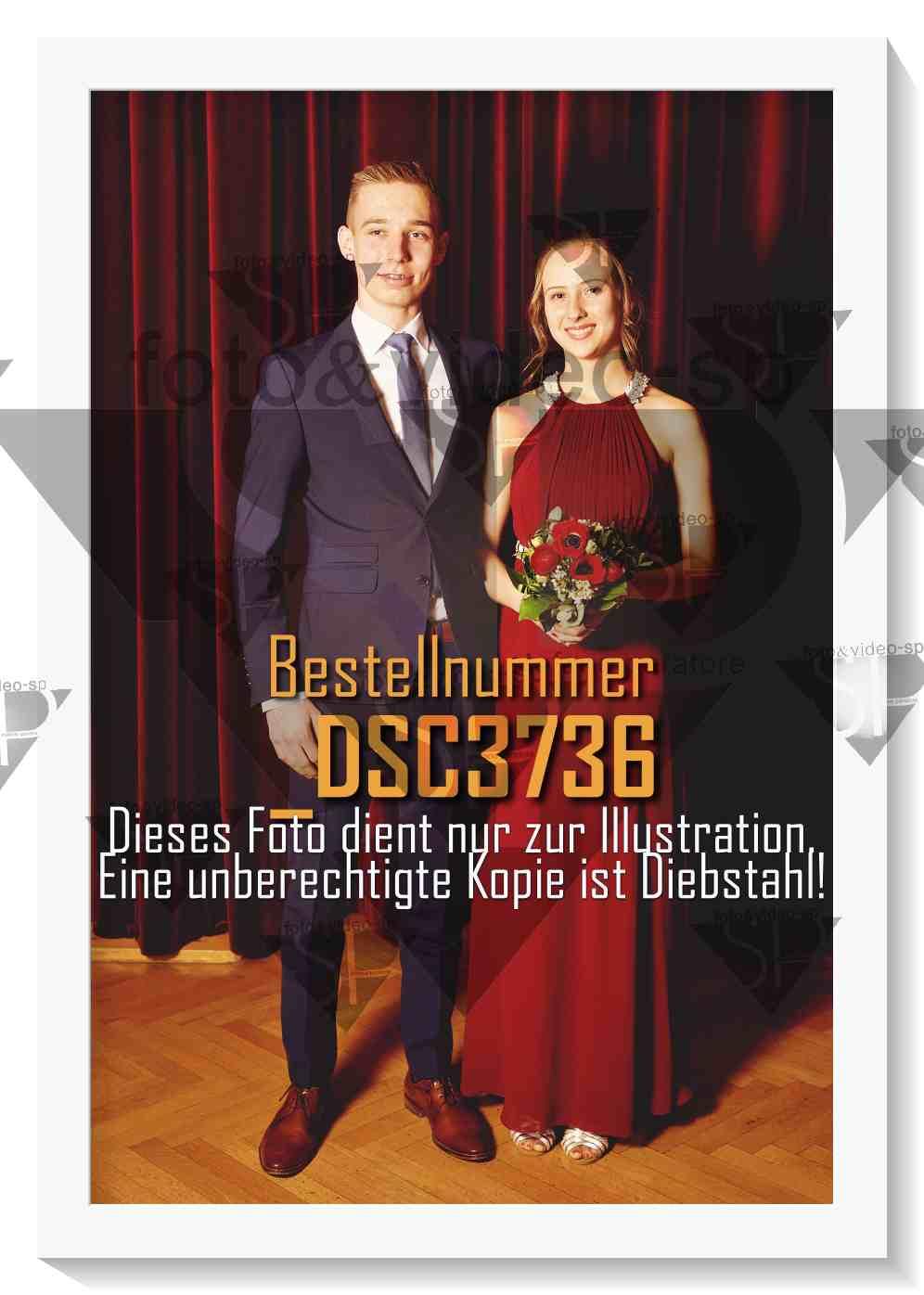 DSC3736