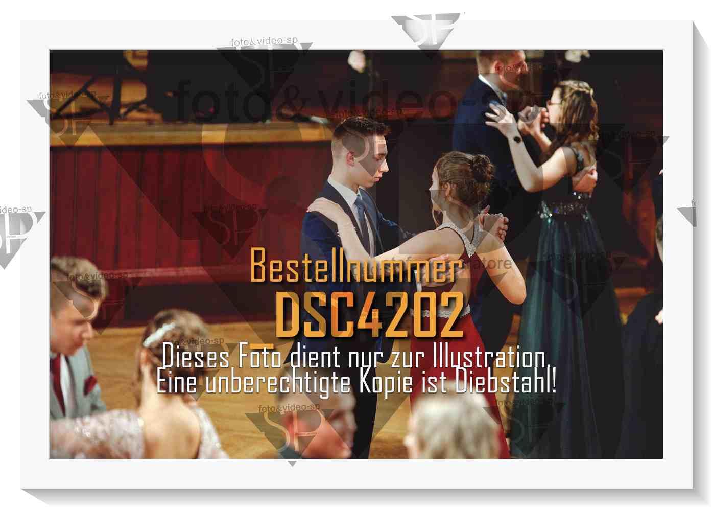 DSC4202