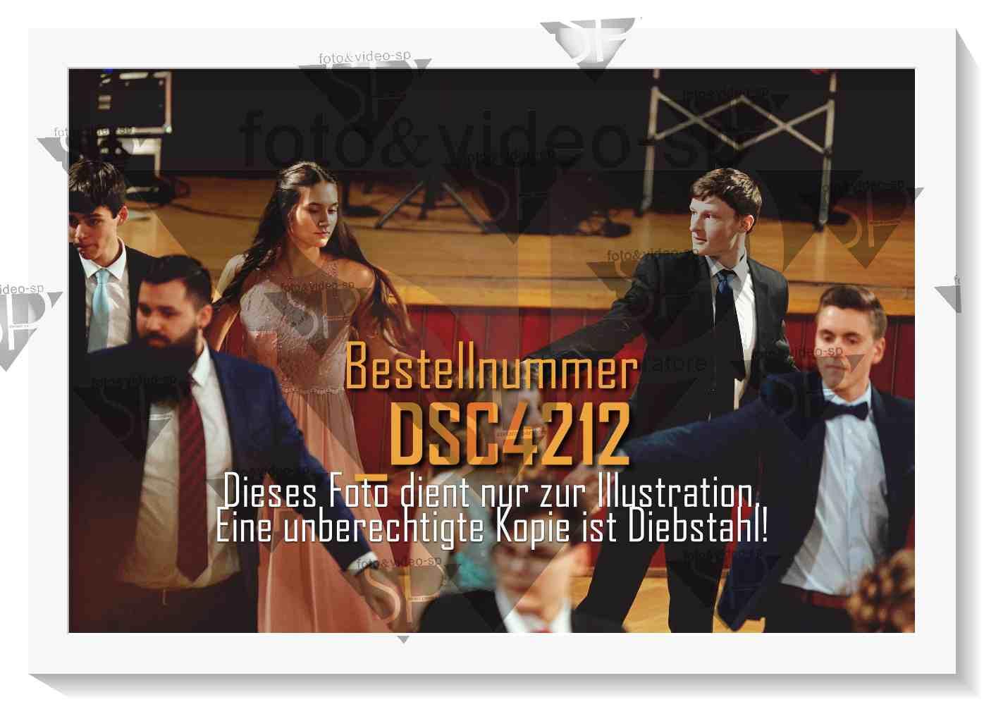 DSC4212
