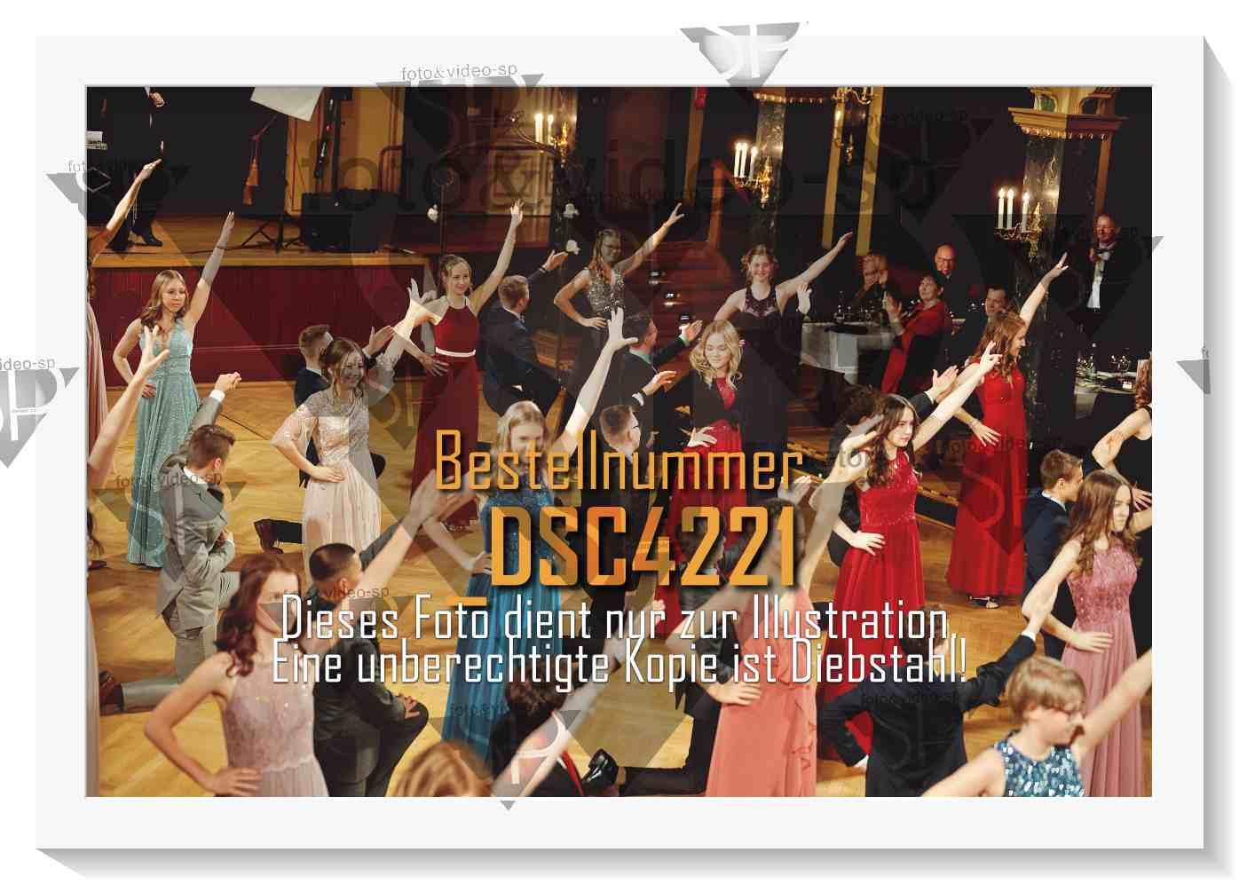 DSC4221