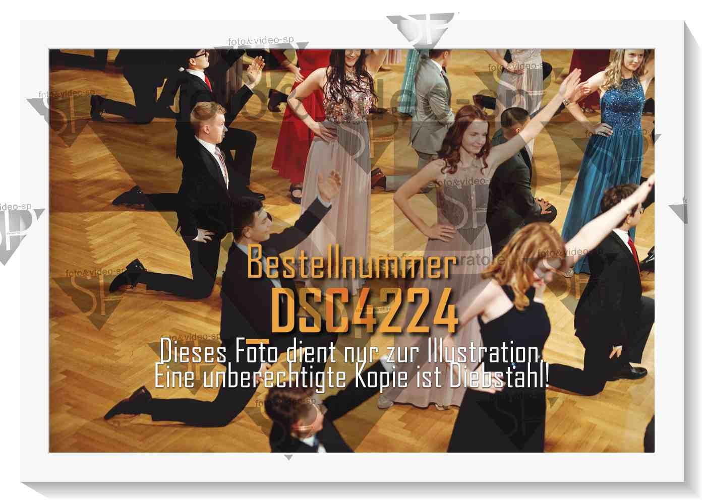 DSC4224