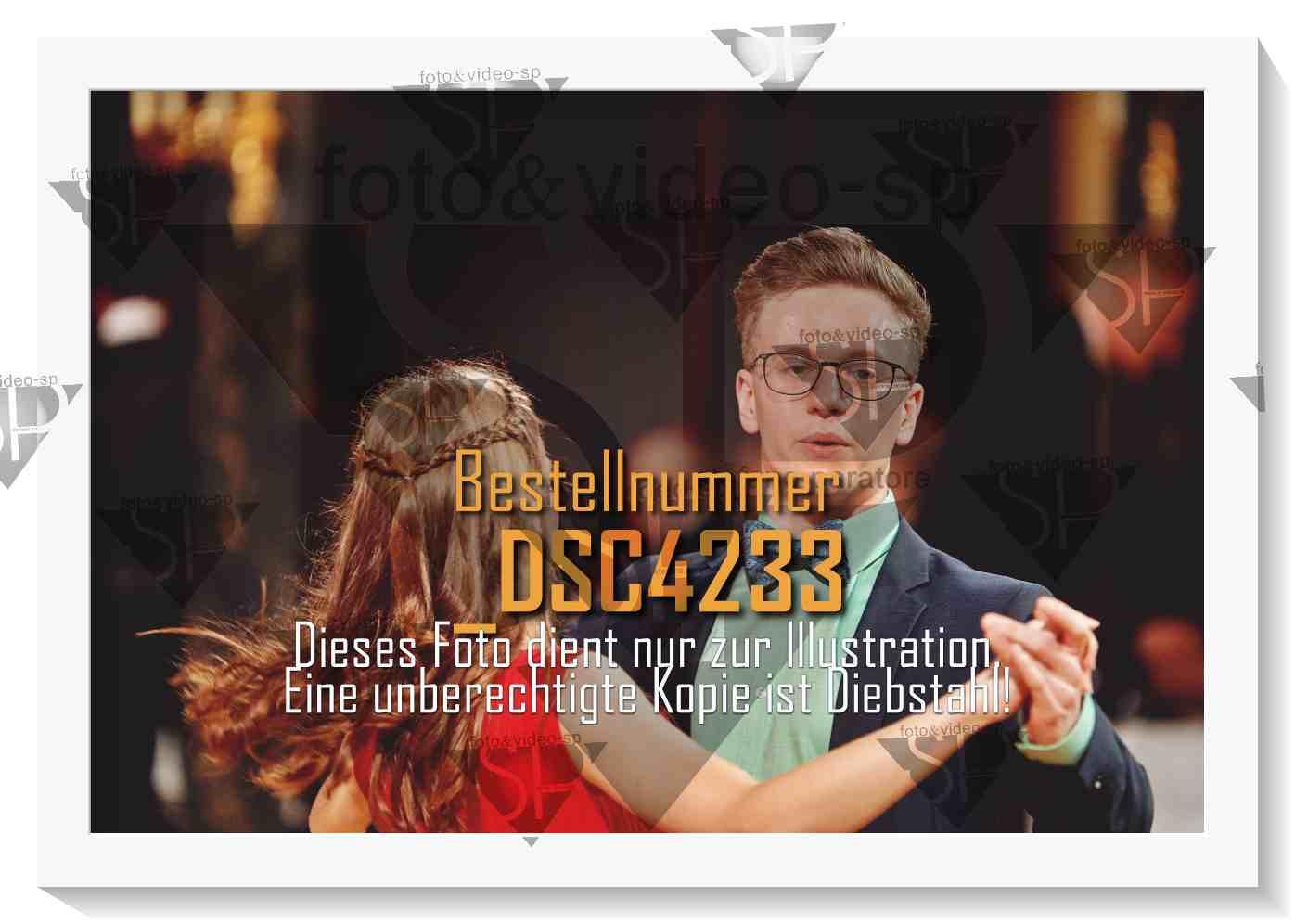 DSC4233
