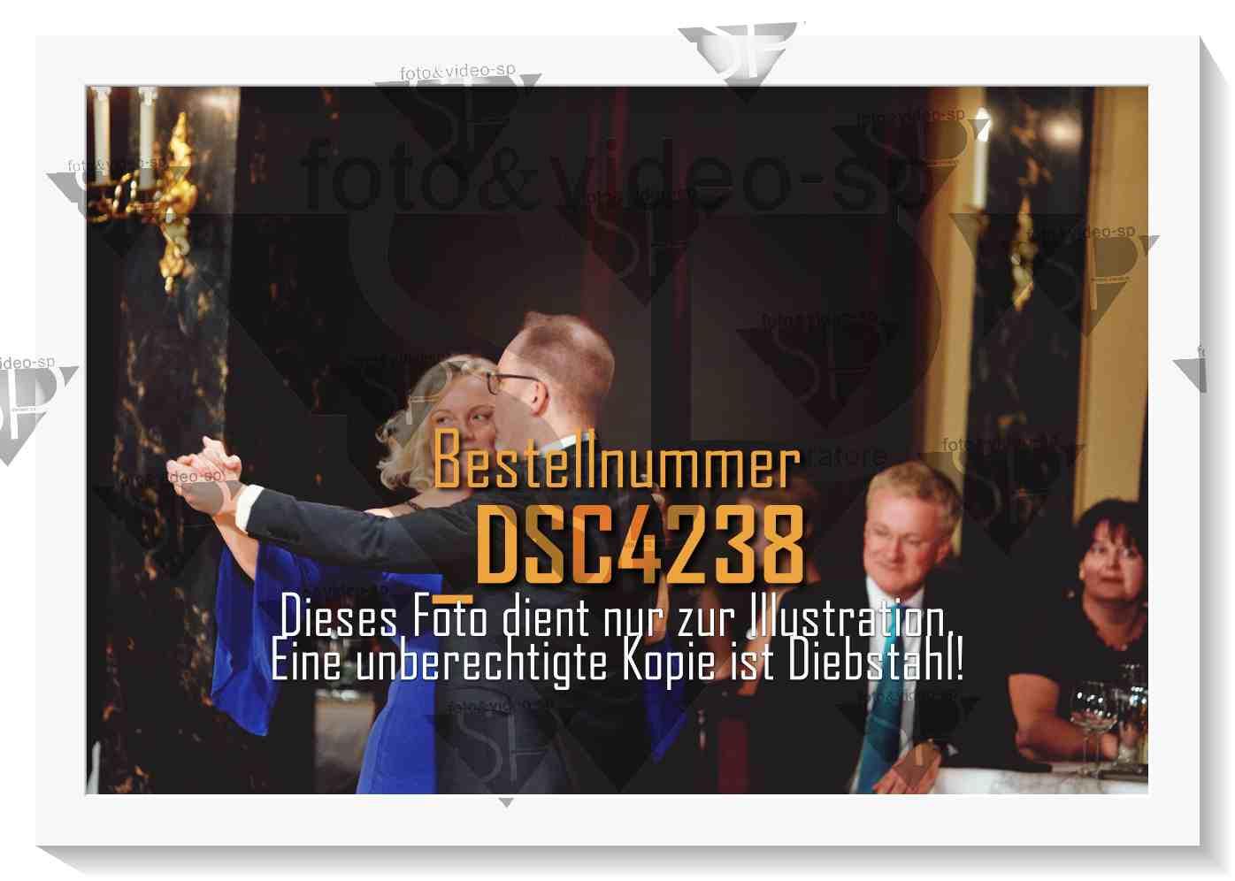 DSC4238