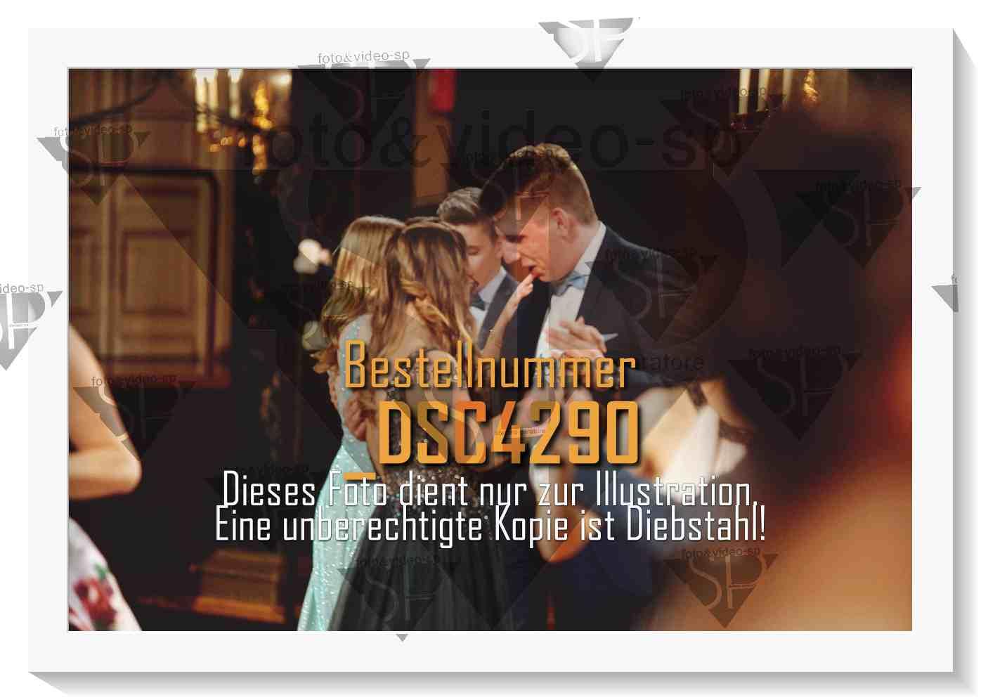 DSC4290