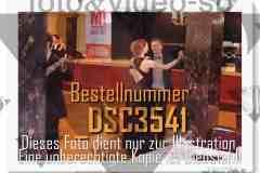 DSC3541