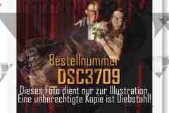 DSC3709