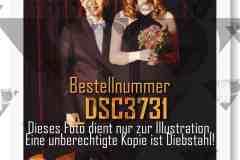 DSC3731