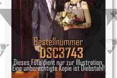 DSC3743