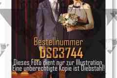 DSC3744