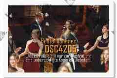 DSC4205