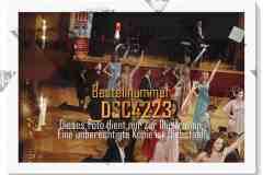 DSC4223