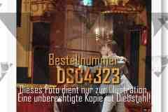 DSC4323