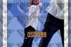 DSC1099