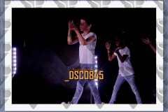 DSC0845
