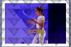 DSC0847