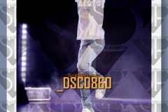 DSC0860
