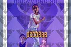 DSC0868