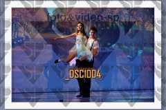 DSC1004