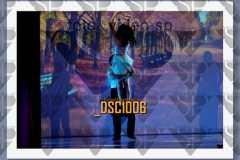 DSC1006