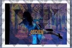 DSC1031