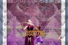 DSC0786