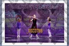 DSC0789