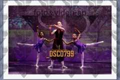 DSC0799