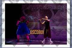 DSC0801