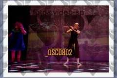DSC0802