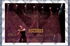 DSC0803