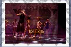 DSC0805