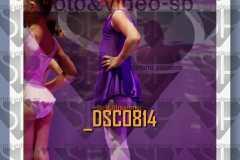 DSC0814