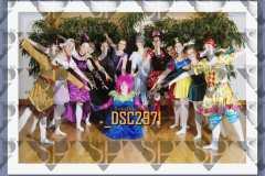 DSC2971