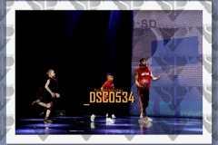 DSC0534