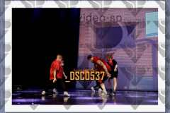 DSC0537