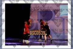 DSC0539