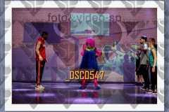 DSC0547
