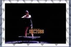DSC2088