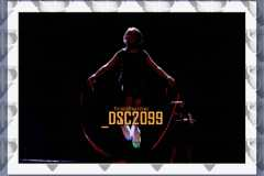 DSC2099