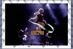 DSC2118