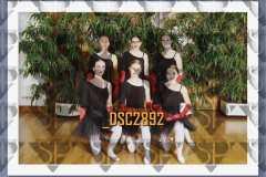 DSC2892