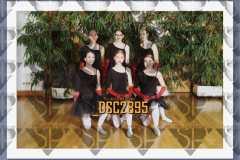 DSC2895