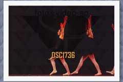 DSC1736