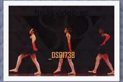 DSC1738