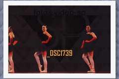 DSC1739