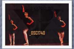 DSC1740