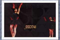 DSC1741