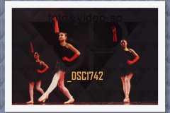DSC1742