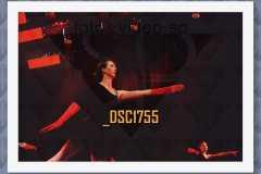 DSC1755